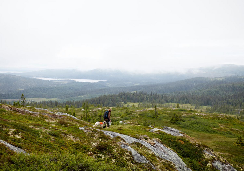 Fäviken Magasinet in Jämtland, Sweden